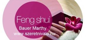 feng shui lakberendezés tanulmány